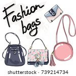 fashion woman bags on white... | Shutterstock .eps vector #739214734