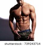 portrait of strong healthy...   Shutterstock . vector #739243714