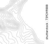 map line of topography. vector... | Shutterstock .eps vector #739249888