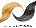 hair. blonde and brunette | Shutterstock . vector #739287064