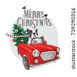 christmas card. french bulldog... | Shutterstock .eps vector #739290316