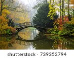 scenic view of misty autumn... | Shutterstock . vector #739352794