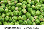 Brussel Sprout Or Rosenkohl In...