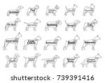 vector dogs icons collection... | Shutterstock .eps vector #739391416