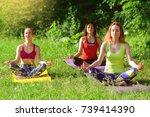 girls posing yoga outside in... | Shutterstock . vector #739414390