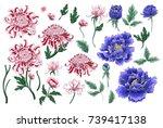 set of botanical flowers... | Shutterstock .eps vector #739417138