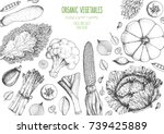 vegetables top view frame.... | Shutterstock .eps vector #739425889