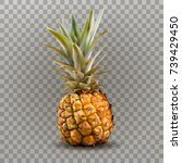 fresh pineapple.3d vector icon... | Shutterstock .eps vector #739429450