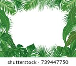 vector tropical jungle... | Shutterstock .eps vector #739447750