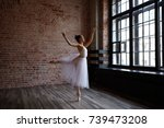 freeze action shot of talented... | Shutterstock . vector #739473208