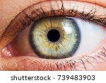 human eye medical detail | Shutterstock . vector #739483903