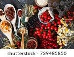medicinal plants and herbs...   Shutterstock . vector #739485850