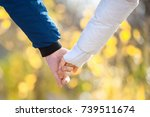 closeup of loving couple... | Shutterstock . vector #739511674