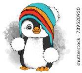 a cartoon penguin in a hat.... | Shutterstock .eps vector #739520920