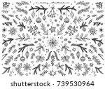 hand sketched floral design... | Shutterstock .eps vector #739530964