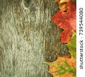 colorful autumn maple leaves on ... | Shutterstock . vector #739544080