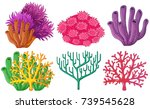 different types of coral reef... | Shutterstock .eps vector #739545628