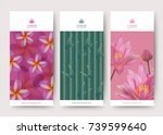 branding packaging lotus and... | Shutterstock .eps vector #739599640