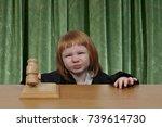 woman district supreme appeals... | Shutterstock . vector #739614730