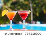 two glasses of fruit cocktail... | Shutterstock . vector #739615000
