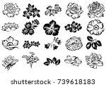 flower set | Shutterstock .eps vector #739618183