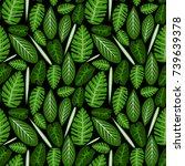 vector seamless pattern...   Shutterstock .eps vector #739639378