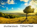 tuscany countryside panoramic... | Shutterstock . vector #739647964