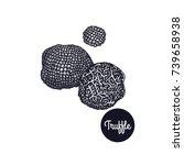 black truffle. gourmet mushroom.... | Shutterstock .eps vector #739658938
