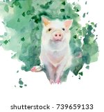 Watercolor Painting. Sketch Of...