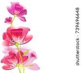 beautiful pink flowers   on a... | Shutterstock . vector #739696648
