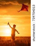 boy launch a kite in the field... | Shutterstock . vector #739704013