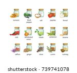 isolated seasonings and spices... | Shutterstock .eps vector #739741078