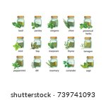 isolated spices and herbs in... | Shutterstock .eps vector #739741093