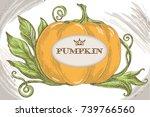 pumpkin king size   Shutterstock .eps vector #739766560
