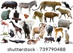 set of different african... | Shutterstock . vector #739790488