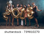 celebrating new year party....   Shutterstock . vector #739810270