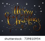 holiday vector lettering... | Shutterstock .eps vector #739810954