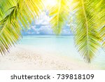 palm and tropical beach and... | Shutterstock . vector #739818109