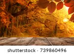 autumn background  empty wooden ... | Shutterstock . vector #739860496