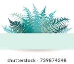 fern frond frame vector... | Shutterstock .eps vector #739874248