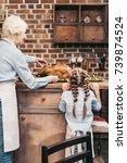 happy grandmother and...   Shutterstock . vector #739874524