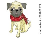 pug dog face   vector... | Shutterstock .eps vector #739882774