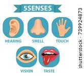 5 senses icon set. touch  smell ...   Shutterstock .eps vector #739924873