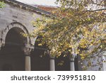 autumn leaves in istanbul ... | Shutterstock . vector #739951810