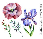 wildflowers in watercolor... | Shutterstock . vector #739974109