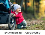 baby boy playing in autumn... | Shutterstock . vector #739989259