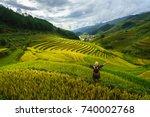 terraced rice field in harvest... | Shutterstock . vector #740002768