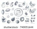 fruits set. hand drawn vector....   Shutterstock .eps vector #740051644