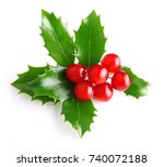 holly berry leaves christmas... | Shutterstock . vector #740072188