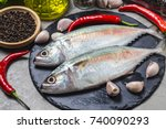 Stock photo indian mackerel rastrelliger kanagurta 740090293